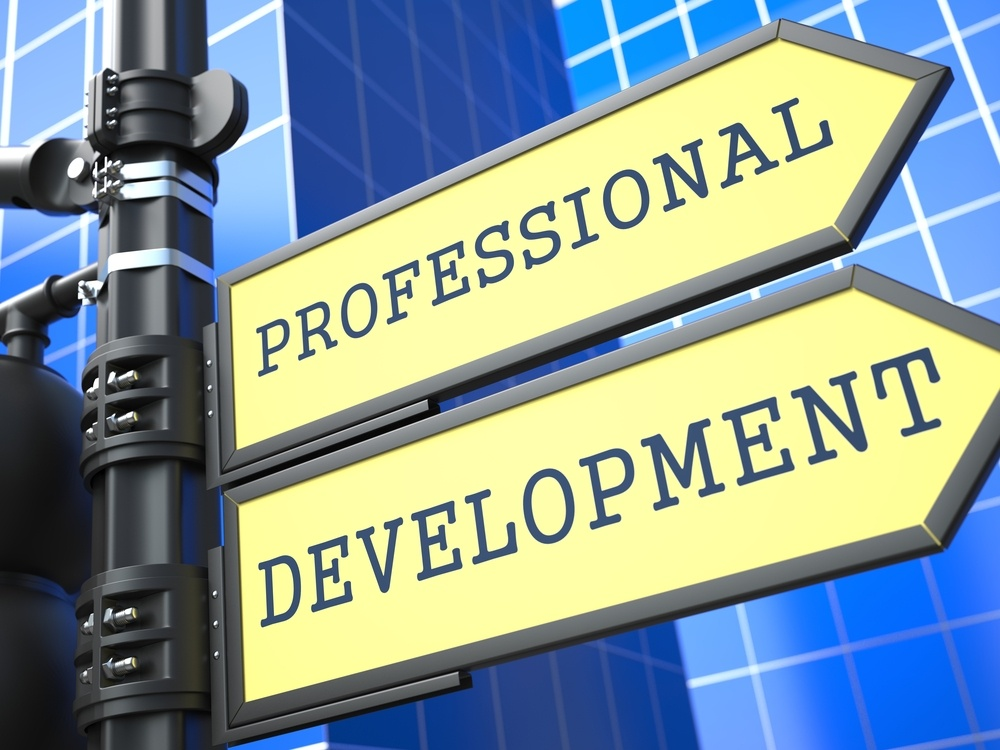 Business Concept. Professional Development Sign on Blue Background.