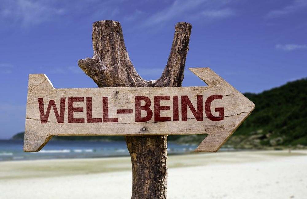 Well-Being wooden sign with a beach on background